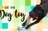 Hoe maak je een hond speelgoed