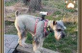 Honden Cam Mount