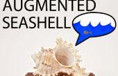 Bouw uw eigen auditieve Augmented Seashell!