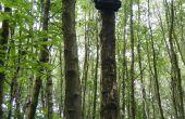 ARUPi - een Low-Cost geautomatiseerde opname-eenheid voor Soundscape ecologen