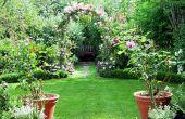 Hoe om te groeien uw eigen tuin van Eden