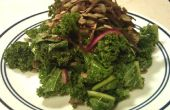 Rauwe boerenkool salade