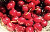 Cherry maneschijn met suiker en gist