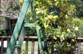 Ladder-re-purposed met een paar treksluiters