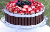 De cake van het fruit van de Kit Kat