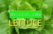 Recycling van sla