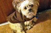 Warm en gezellig hondje jas gemaakt eenvoudig en goedkoop!