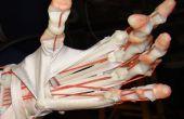 Hand gebouwd humanoïde Robots, Part1: Introduction