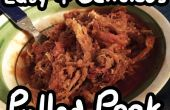 Langzame fornuis Pulled Pork