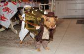 Cody's 2012 kostuum.  Indian Jones en uitvoering van de Ark. Nachal