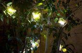 6 tips over hoe om te kiezen van zonne-landschap verlichting.