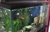 Automaat, bioritme LED Aquarium licht