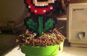 Hoe maak je een Piranha plant met een buis