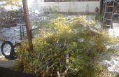 Geweven tak Speelhuisje: wat doet men met een aftakking vergieten boom?