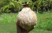 Schil een kokosnoot; Kokosmelk maken