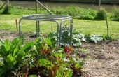 Hoe maak je een modulaire plantaardige bescherming kooi.