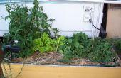 Grote Self-Watering Planter + regen water opslag UPDATE
