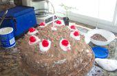 Portal Cake (niet een leugen)