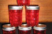 Appel kaneel Jelly-A geweldig alternatief voor Cranberry saus voor de vakantie