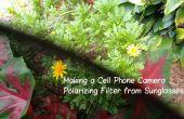 Maken van een mobiele telefooncamera polariserende Filter van zonnebril