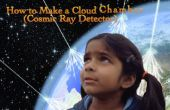 Hoe maak je een Cloud-kamer (Cosmic Ray Detector)