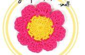 Hoe haak een acht-petal bloem (#1 - kleine)