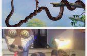 Hoe te maken uw zeer eigen Kaa uit The Jungle Book