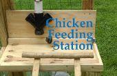 Kip voederen Station