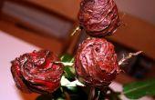 Eetbare chocolade bedekte rozen