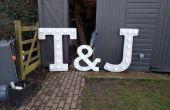 Carnaval/bruiloft verlichte Letters