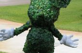 Mickey Mouse Topiary kostuum
