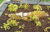 Kunstmatige turf Bog voor vleesetende planten