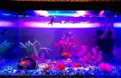 Aquarium LED verlichting || Hoge intensiteit || Verbeteren van de vis kleur