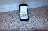Geval, verborgen compartiment ring