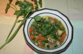 Stoom en druk gekookt stoofpot