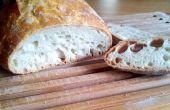 Neen Knead | Zelfgebakken brood recept