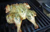 Gekruide kip onder bakstenen