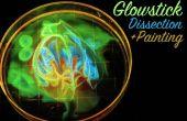 Glowstick dissectie en schilderen
