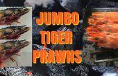 Jumbo garnalen van de tijger - op de grill