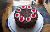 Het maken van de perfecte Portal-taart!