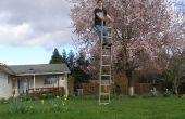 """Hoe om het """"evenwicht"""" op een ladder"""