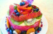 Watermeloen--Cake van het Fruit en een kleine extra eind