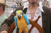 Arrrr Me Hardys - Tis de Segway piraat!