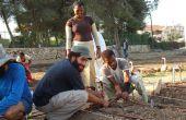 Hoe maak je een gemeenschappelijke tuin