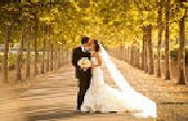 3-D afdrukken een bruiloft
