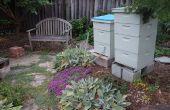 Achtertuin bijen in de 'burbs