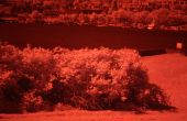 (in de buurt van) infrarood fotografie