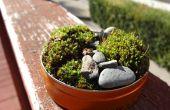 Mini mostuin uit achtertuin materialen