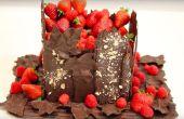 HOW TO MAKE CHOCOLADE BLAFT, BLADEREN, PLAAT! MIJN TUIN VAN CHOCOLADE CAKE!