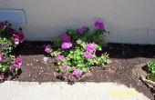 Propageren planten de gemakkelijke manier... Met gemakkelijk te maken Mini-Serres
